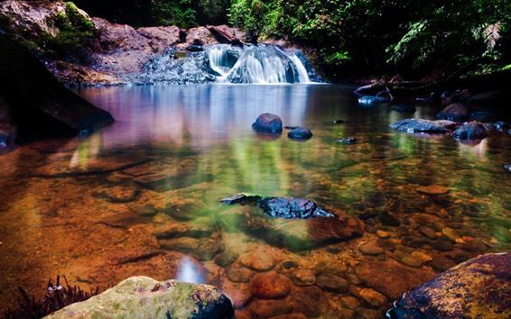壁紙 滝、岩、茂み、森