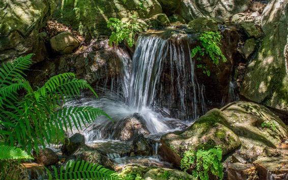Wallpaper Waterfall, stream, stones, fern leaves