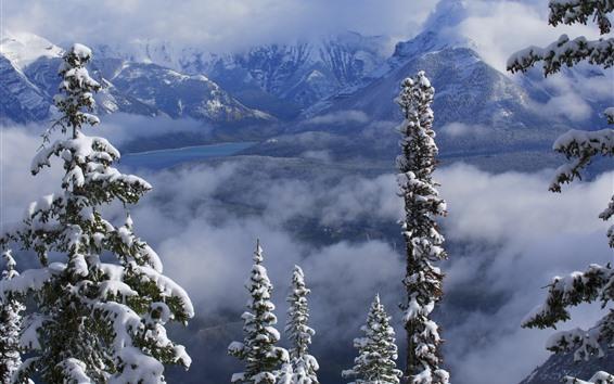 壁紙 バンフ国立公園、山、冬、雪、木、雲、カナダ