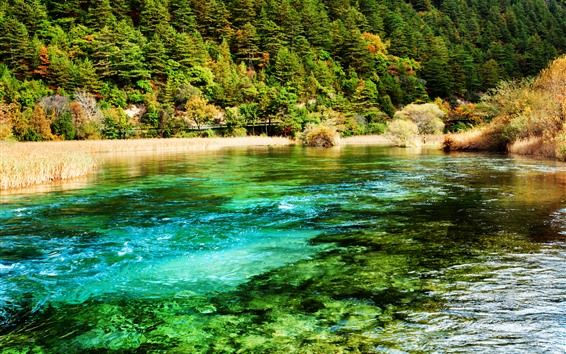 Wallpaper Beautiful Jiuzhaigou nature scenery, lake, grass, trees, China