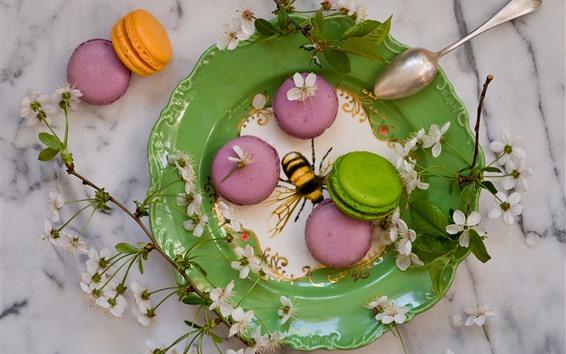 배경 화면 케이크, 마카롱, 화려한, 음식, 접시