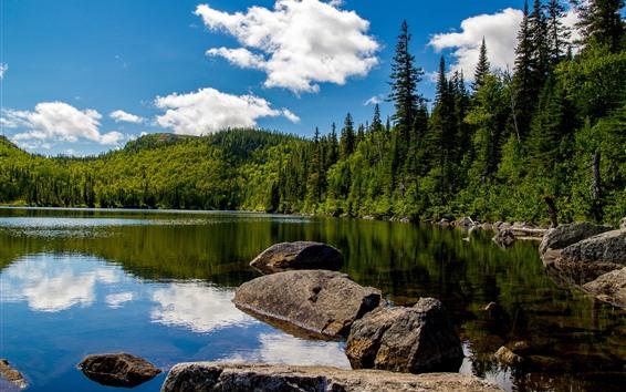 Papéis de Parede Canadá, ensolarado, lago, árvores, pedras, céu azul, nuvens brancas