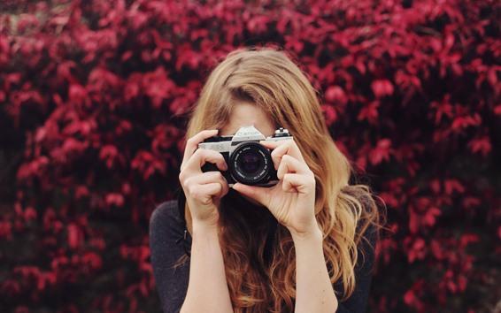 壁紙 女の子はカメラを使う、厄介な背景