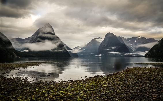Fondos de pantalla Nueva Zelanda, Montañas, Fiordo, Lago, Niebla, Nubes, Mañana