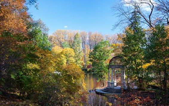 Fond d'écran Parc, étang, arbres, automne, usa