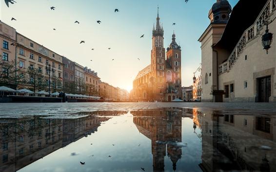 Papéis de Parede Polônia, Cracóvia, Rua, Poça, Água, Pássaros