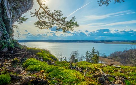 Wallpaper Sweden, Grodinge, river, trees, grass, clouds, sunshine