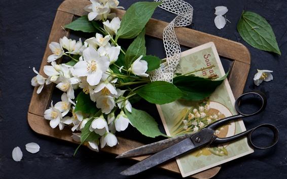 Papéis de Parede Flores brancas, tesouras, cartão postal, natureza morta