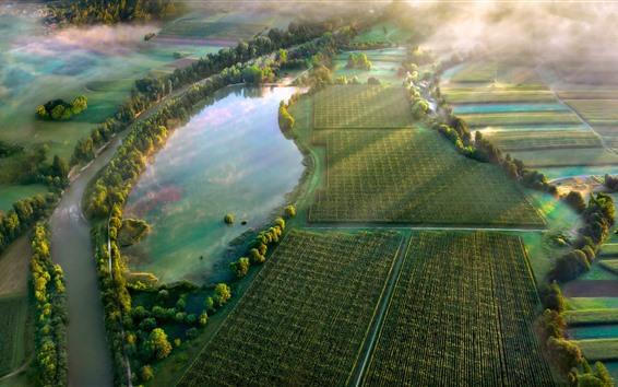 Fond d'écran Campagne, champs, vert, matin, brouillard, étang, rayons de soleil