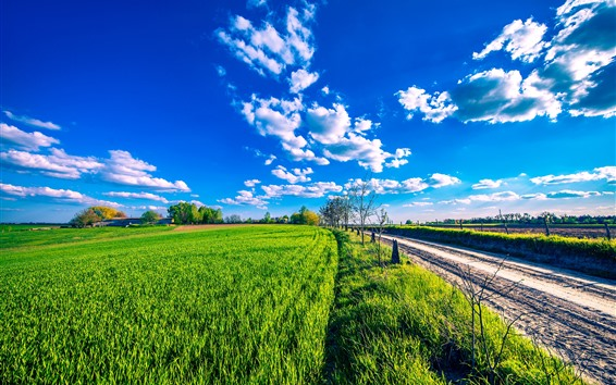 Wallpaper Countryside, green fields, road, blue sky, clouds