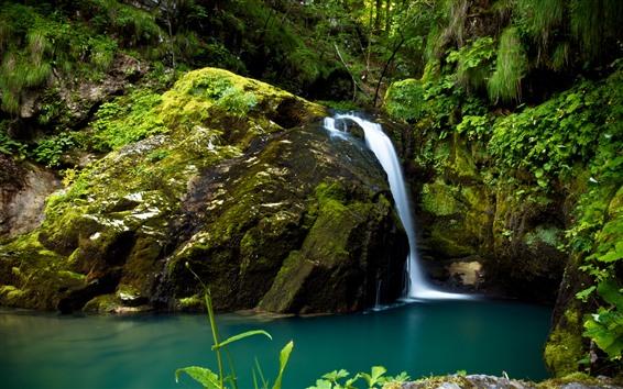 壁紙 クロアチア、森、滝、グリーンモス
