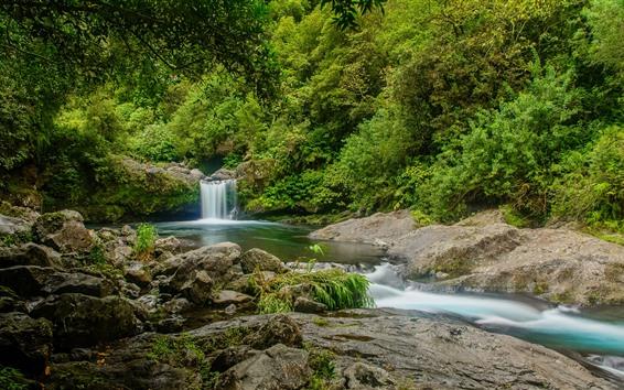 Papéis de Parede França, floresta, árvores, cachoeira, pedras, riacho