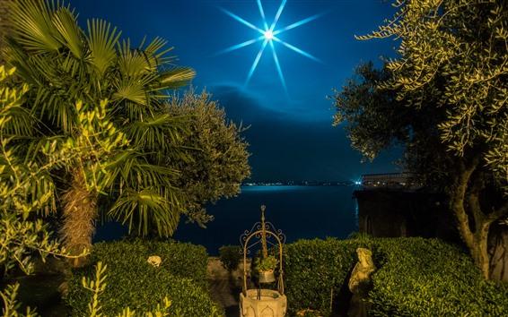 Wallpaper Italy, Lombardy, palm trees, moon, night, lake, light rays