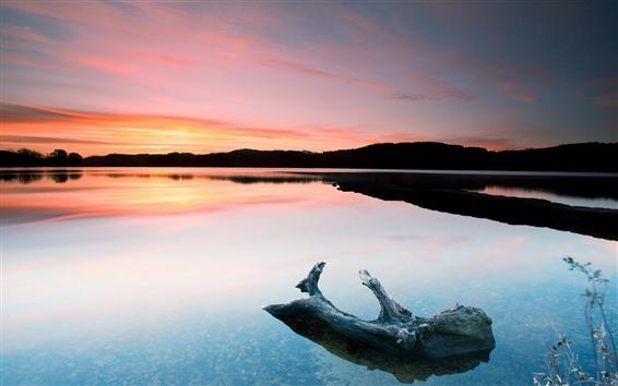 Wallpaper Lake, sunset, silhouette