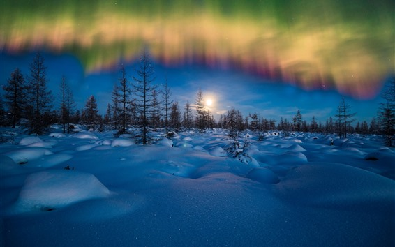 Wallpaper Northern lights, winter, snow, trees, evening, stars