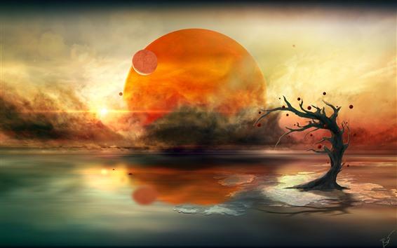 배경 화면 행성, 호수, 나무, 태양, 크리 에이 티브 사진
