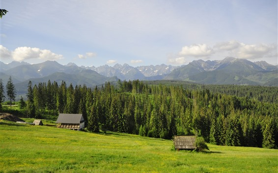 Wallpaper Poland, Tatry, houses, mountains, trees, grass