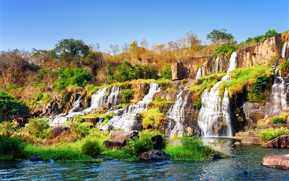 배경 화면 퐁 구르 폭포, 베트남, 관목, 나무, 물