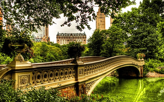 Wallpaper River, bridge, trees, houses, city, park