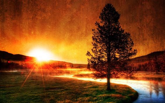 Wallpaper River, tree, grass, sunrise, silhouette, morning