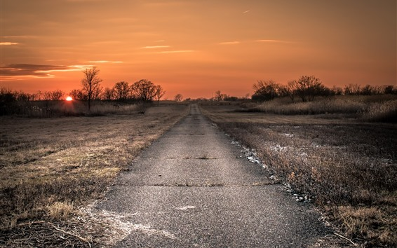 Wallpaper Road, grass, trees, sunset, countryside
