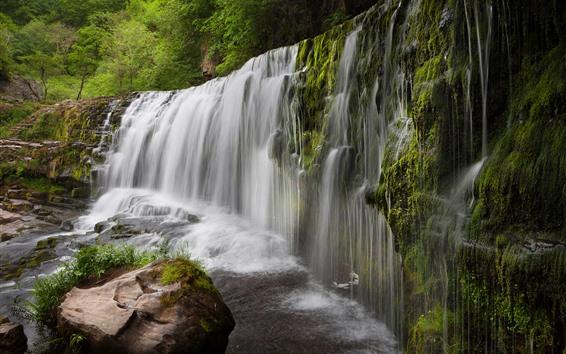 壁紙 英国、滝、水、石、木、苔