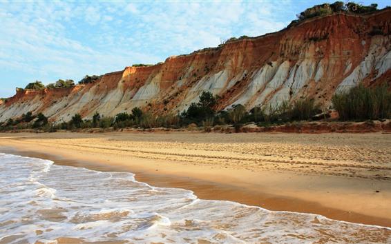 Papéis de Parede Costa, mar, praia, espuma, árvores, céu azul