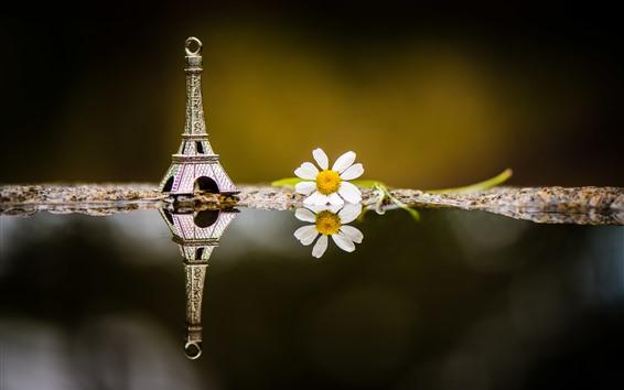 Fond d'écran Décoration de la tour Eiffel, fleur blanche, eau