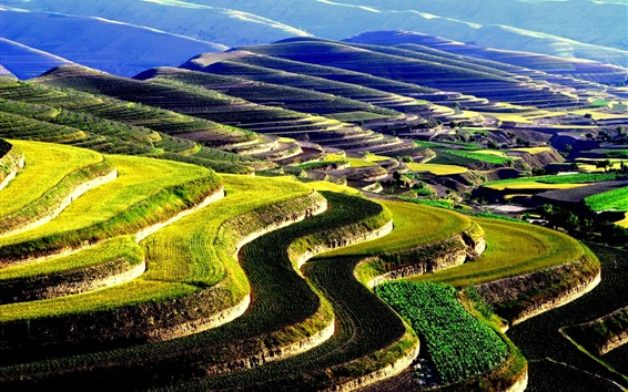 Wallpaper Huining Terraces, countryside, China