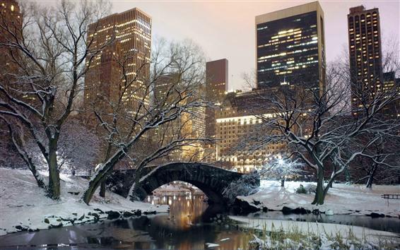 Fond d'écran New York, parc, neige, pont, arbres, hiver, usa