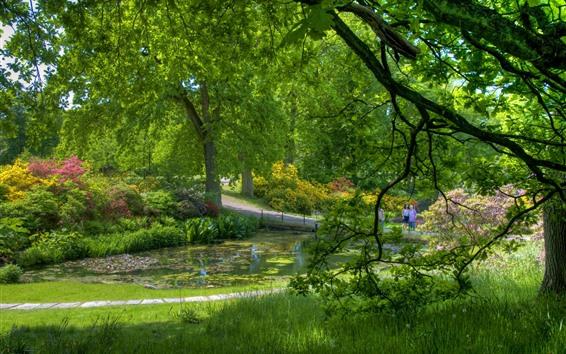 Papéis de Parede Parque, árvores verdes, grama, flores, lagoa, bela paisagem