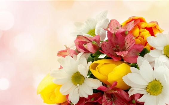 Обои Некоторые цветы, красный, желтый, белый, туманный фон