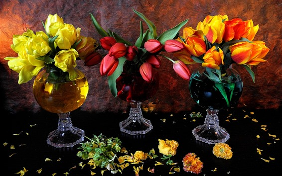 Papéis de Parede Três cores tulipas, amarelo, vermelho, laranja