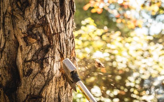 壁纸 斧头砍树,飞溅