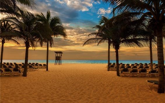 Wallpaper Beach, palm trees, chairs, sea, dusk