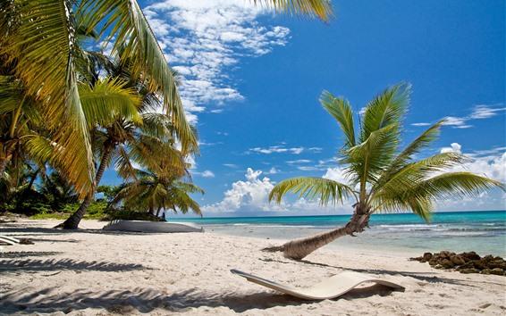 Обои Пляж, пальмы, солнечные лучи, море, голубое небо, тропический
