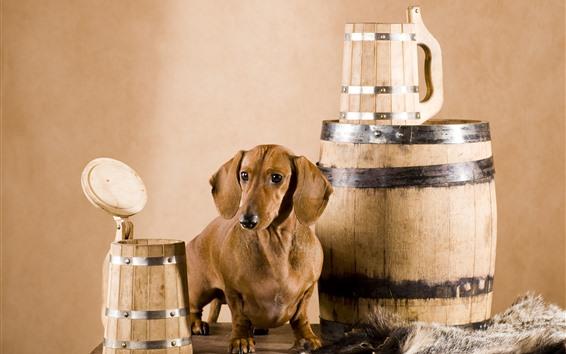 壁紙 犬と樽
