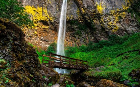 Обои Elowah Falls, водопад, мост, скалы, мох, Орегон, США