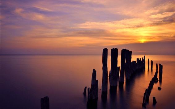 壁紙 エバンストン、ミシガン湖、夕日、雲、木