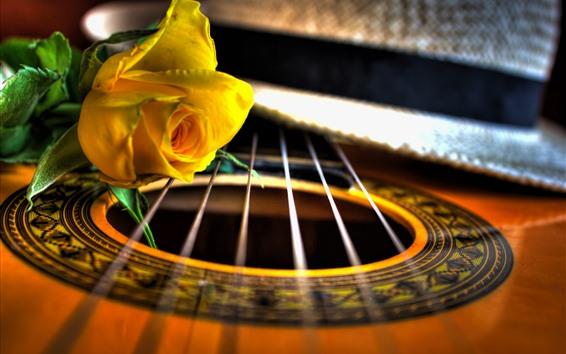 배경 화면 기타와 노란 장미, 매크로 사진