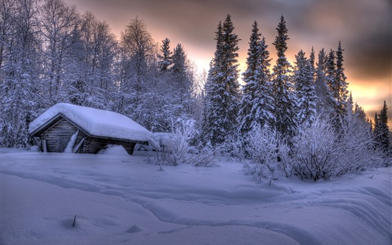 Wallpaper Lapland, Finland, thick snow, trees, house, dusk