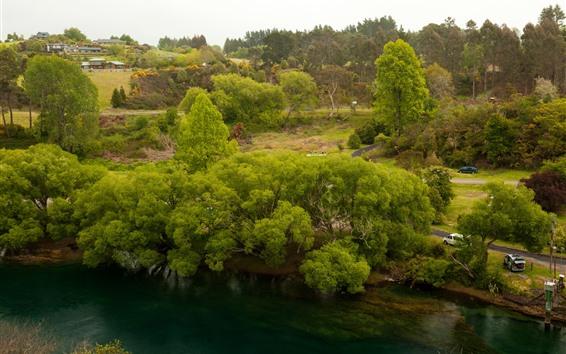 Papéis de Parede Nova Zelândia, Rio Waikato, Árvores, Casas
