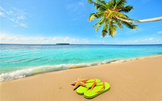 Fondos de pantalla Palmera, Playa, Mar, Olas, Estrellas De Mar, Flip Flop, Cielo Azul