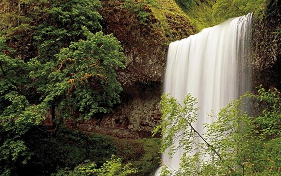 Hintergrundbilder Wasserfall, Bäume, Oregon, USA