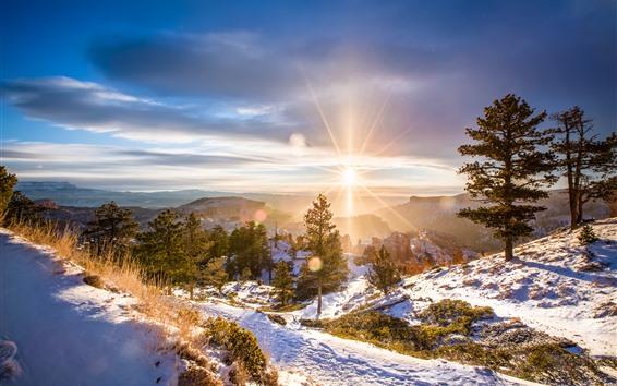 Fond d'écran Hiver, aube, lever de soleil, neige, arbres, montagnes, rayons de soleil