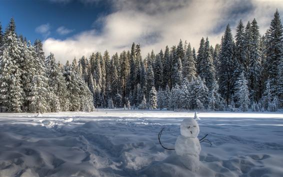 Обои Yosemite Национальный парк, Снеговик, Снег, Зима, Деревья, Тень