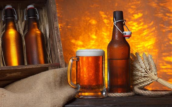 Wallpaper Beer, foam, cup, bottle, wheat