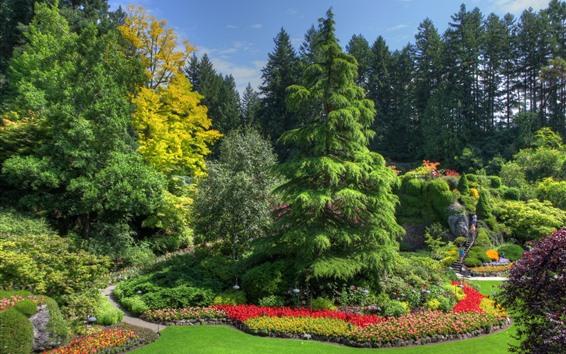 壁紙 カナダ、ビクトリア、庭、公園、木、緑