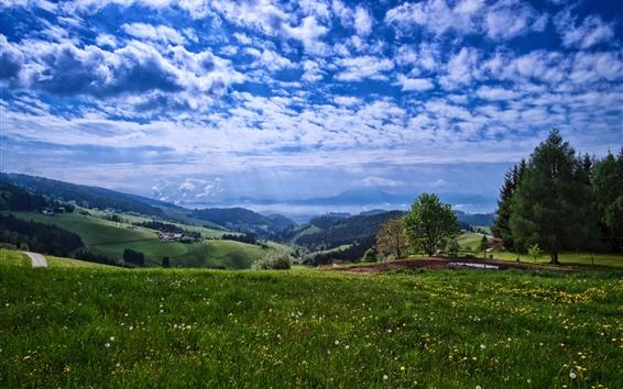 Fondos de pantalla Campo, montañas, árboles, flores, cielo azul, nubes