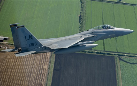 Обои F-15C Eagle Fighter, Flight, Sky, поля